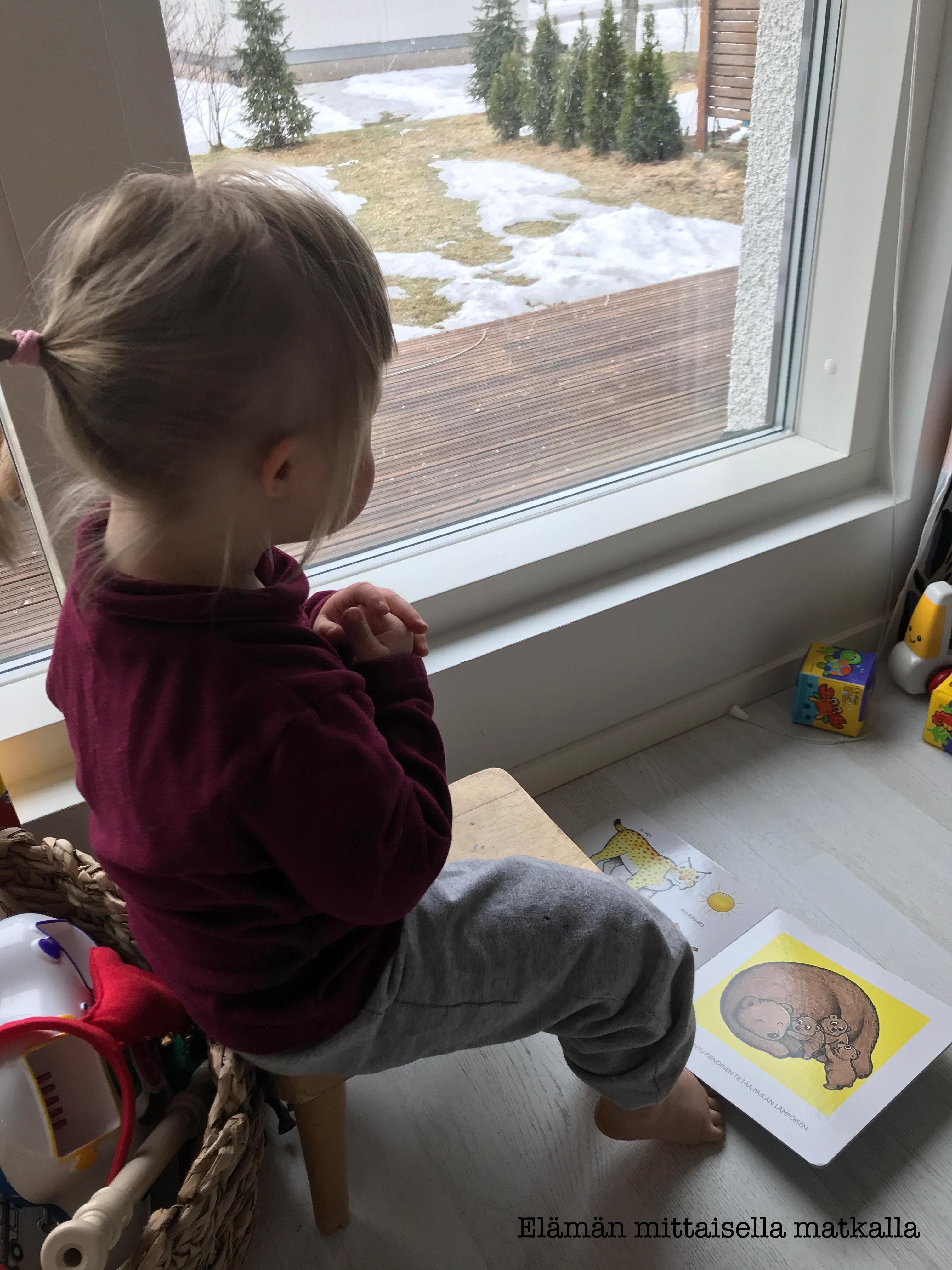 2,5-vuotiaan kehitys (osa 3)