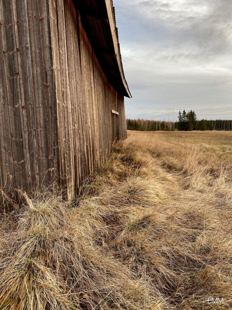 Haavena koti maaseudulta