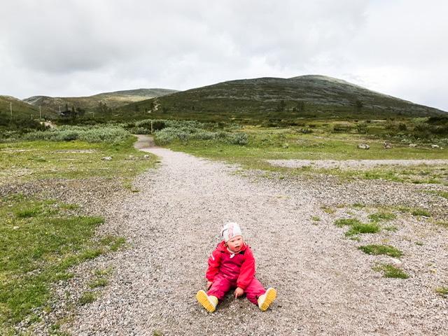 Mitä ottaa huomioon, kun lähtee pienten lasten kanssa Lappiin kesällä?